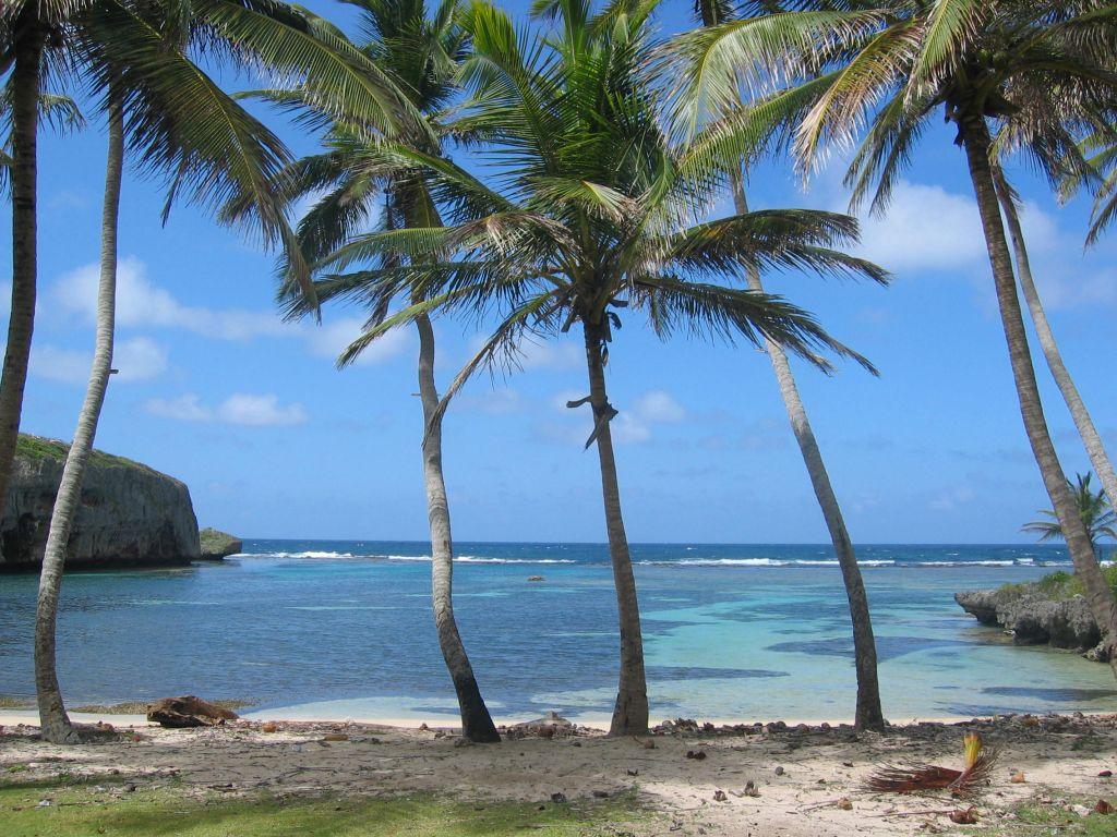 Playa Madam 2