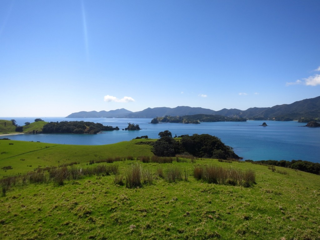 02_Bay of Islands08