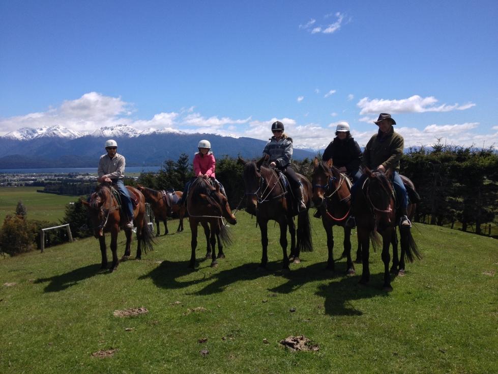 South Island Horsefarm 13