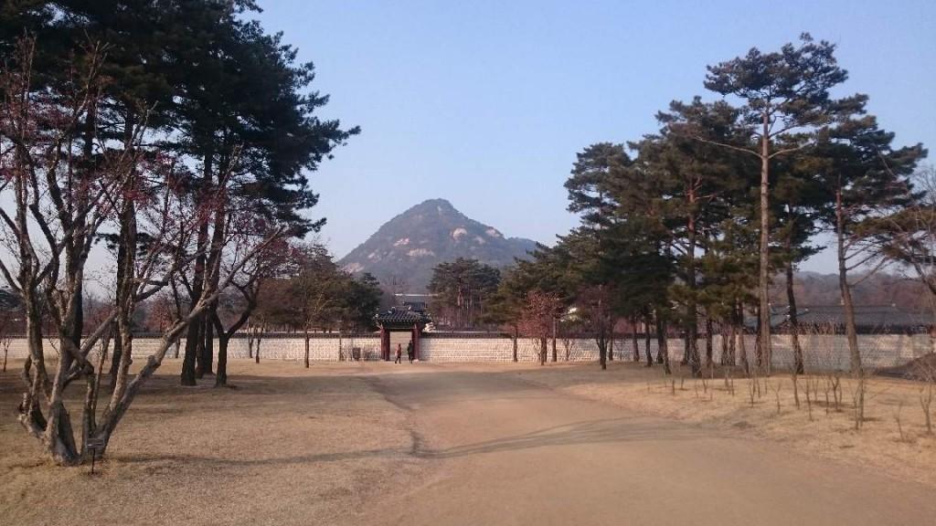 01_25_Seoul 007